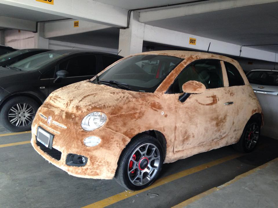 060915 CC Wrapped in fun – it's a furry FIAT 1