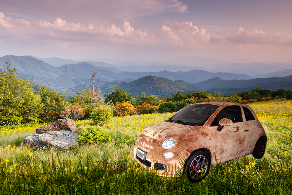 060915 CC Wrapped in fun – it's a furry FIAT 5