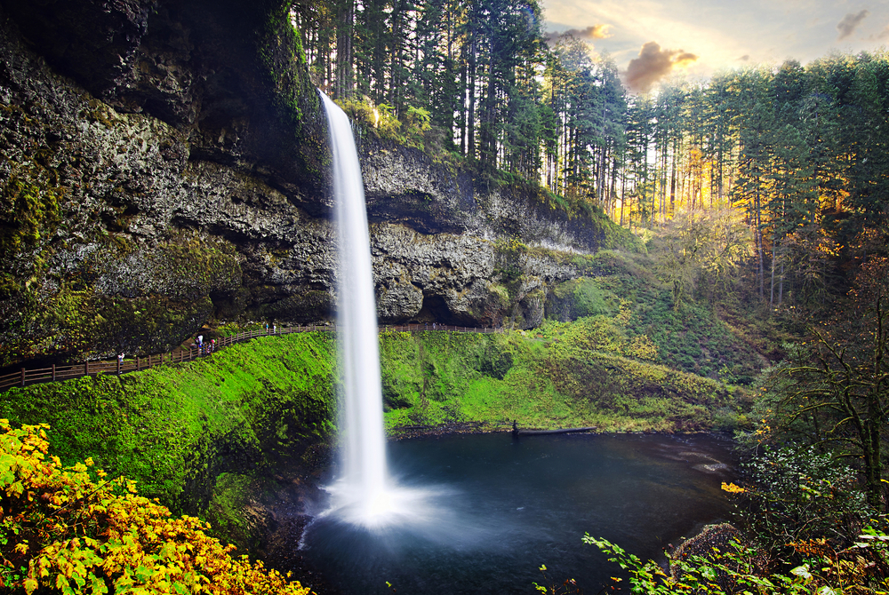 The beauty of Silver Falls State Park near Silverton, Oregon