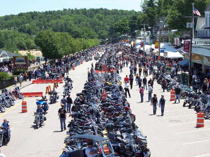 line of motorcycles share the road
