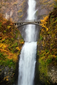 Multnomah Falls, framed by changing fall colors